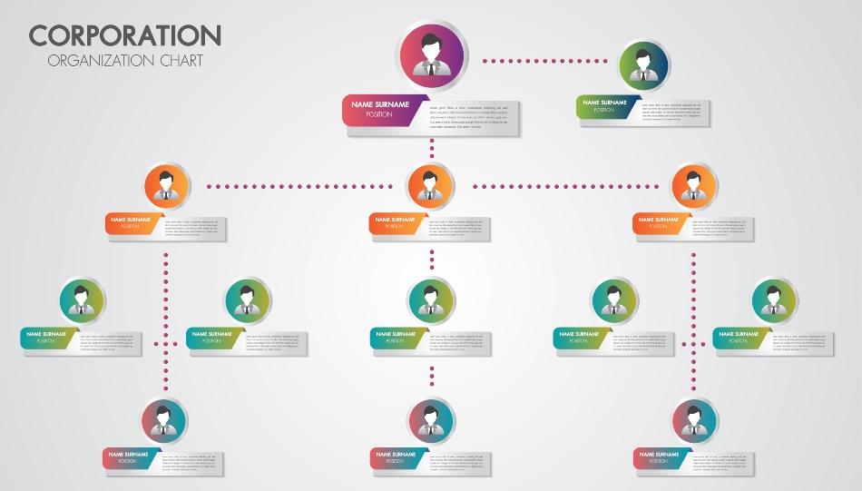 Organigramm, Darstellung einer möglichen Unternehmensstruktur